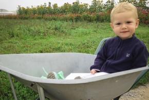La libre cueillette de fruits et légumes avec les enfants