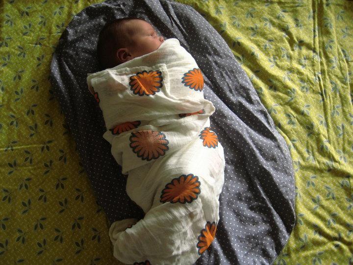 bébé emmailloté topponcino