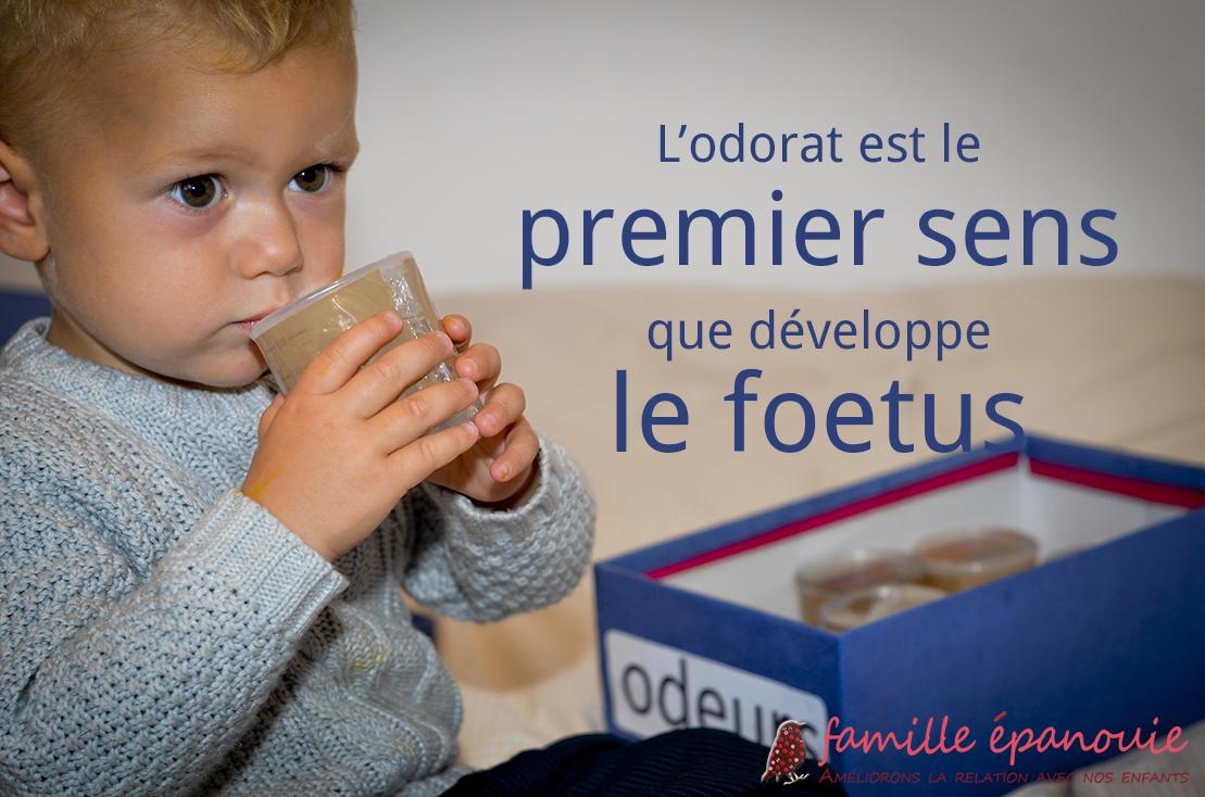 Pédagogie Montessori : les boîtes à odeurs