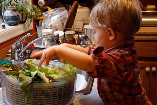 enfant-lave-salade