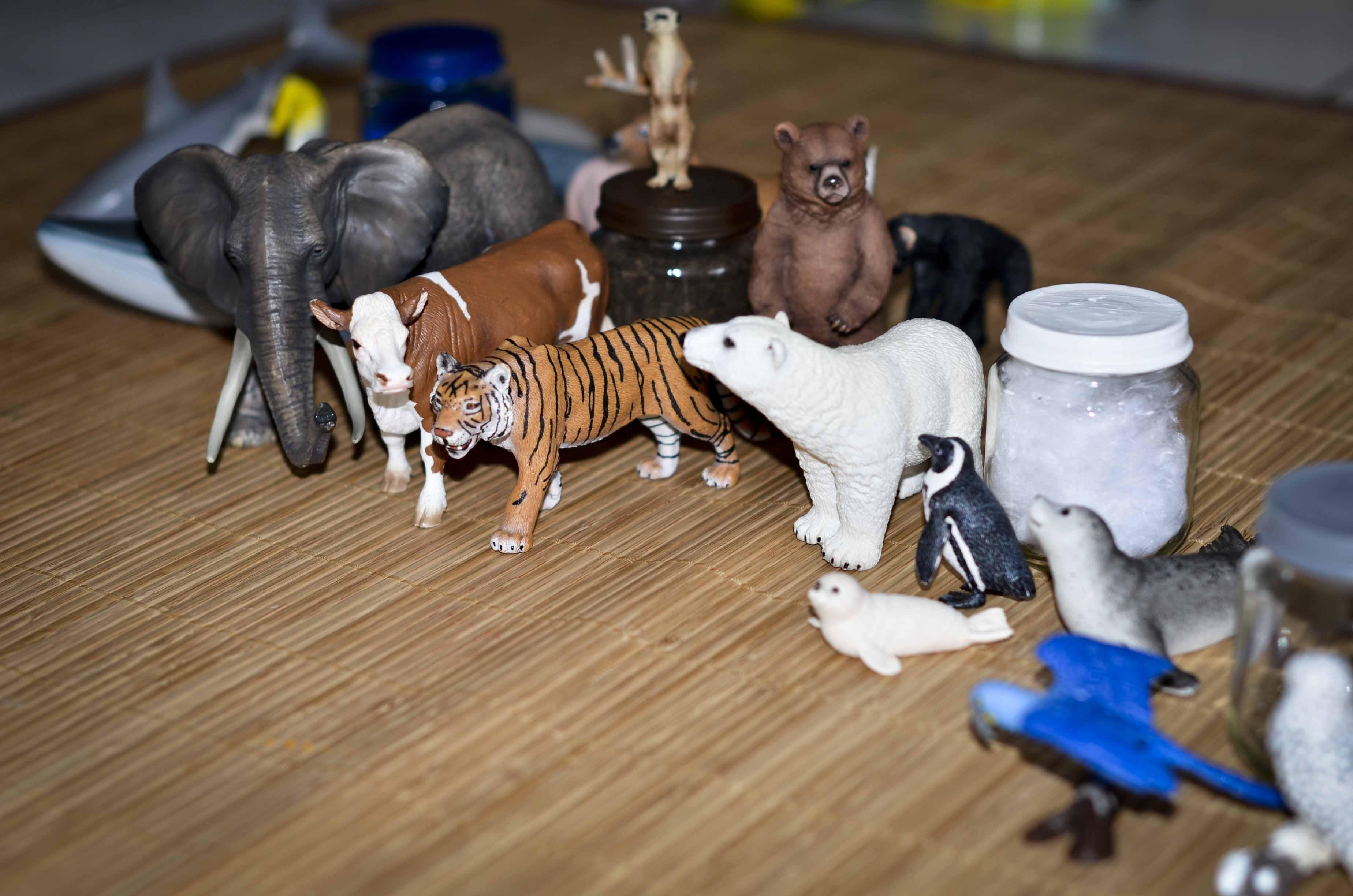 Activité pour apprendre les animaux à son enfant