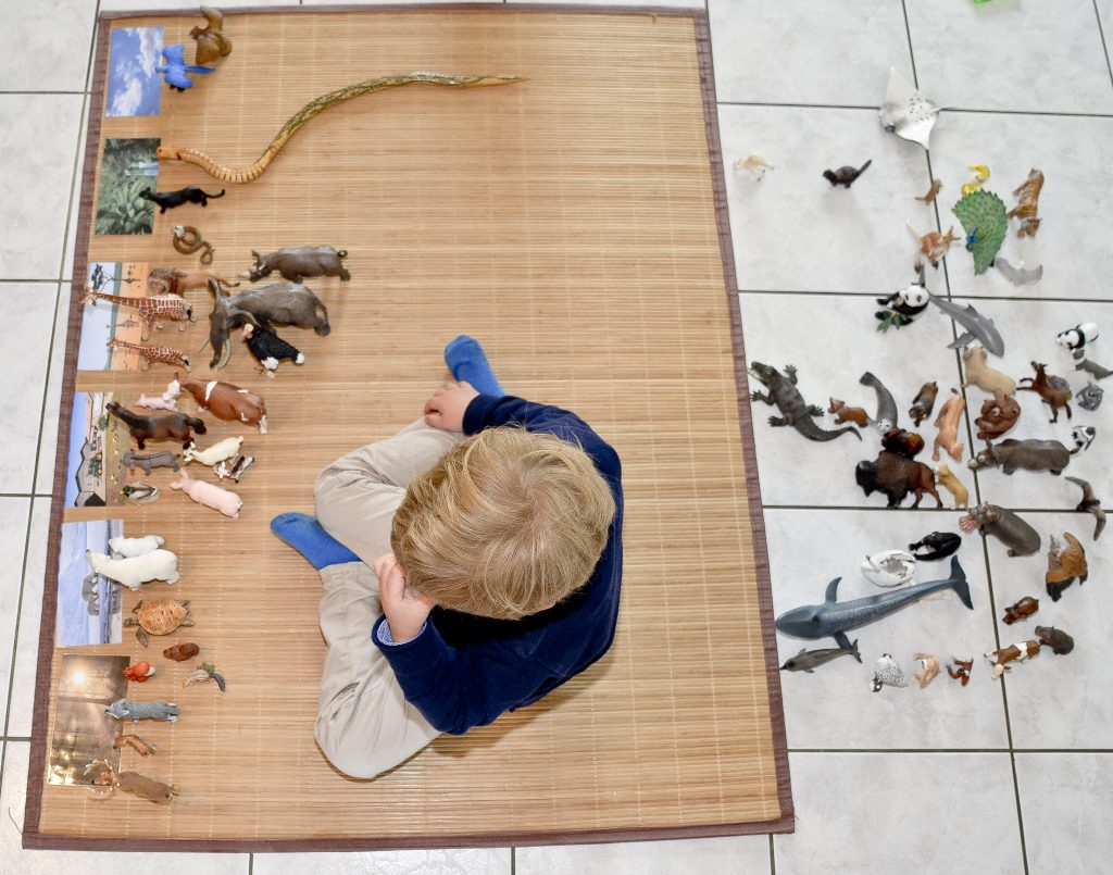 enfant-joue-animaux-schleich