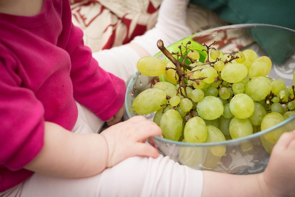 Besoins nutritionnels et allaitement maternel